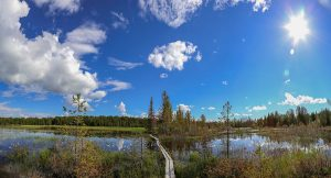Naturreservat Jämtland