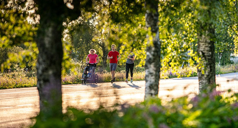 Springa Östersund