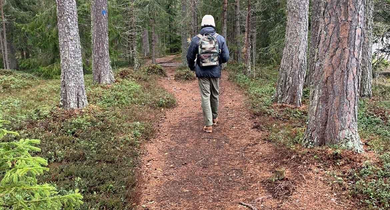 Promenad på Andersön